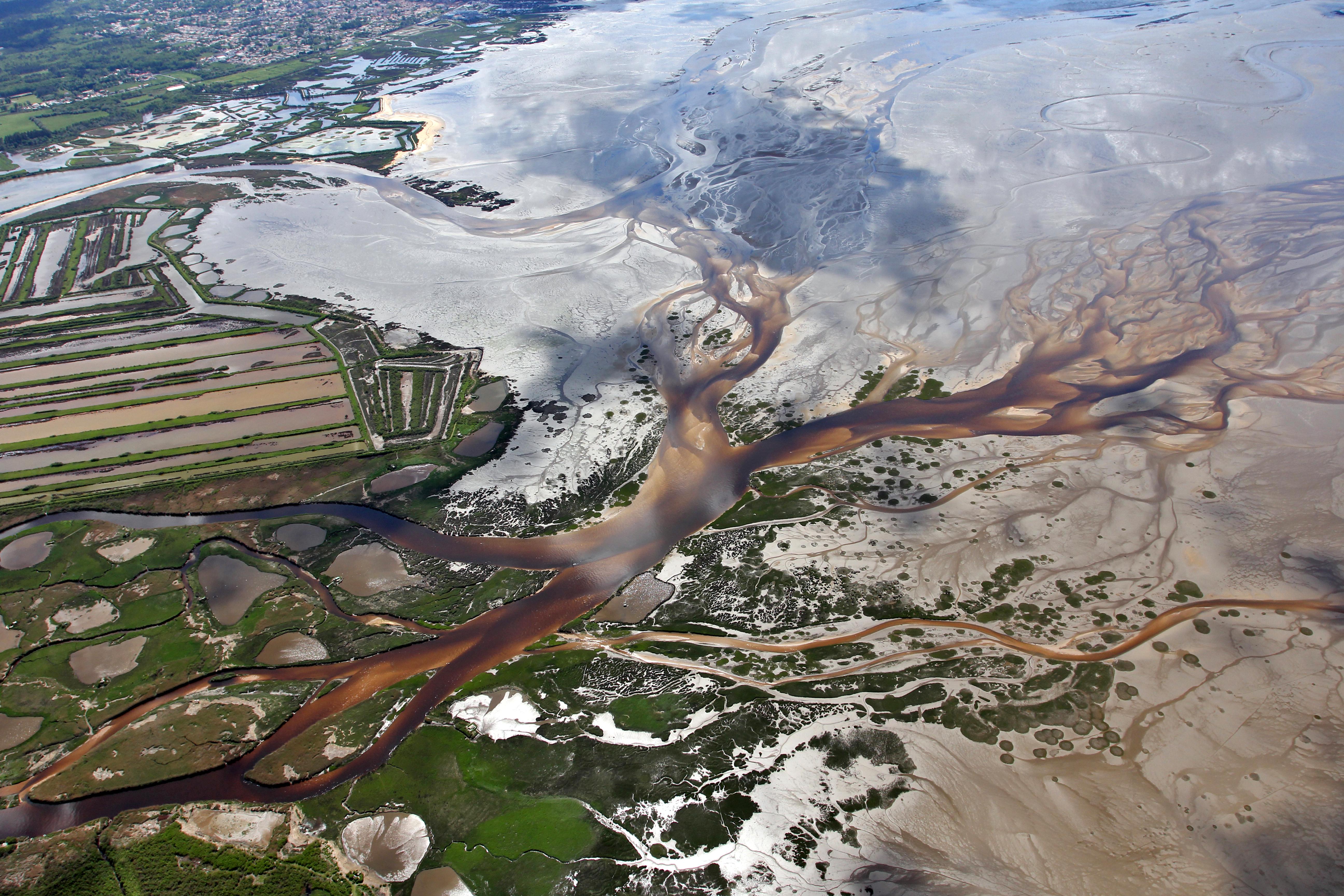 Delta de l'Eyre, photographie de Michel Collen.