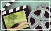 Film documentaire surprise
