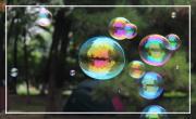 Des bulles pour passer le temps