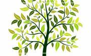 Ciné-Lecture Journée de l'arbre