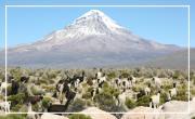 """Bolivie, """"les Dieux de l'Altiplano"""""""