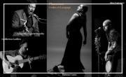 Flamenco, codes et langages