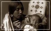 L'histoire des indiens à travers l'exemple de la nation Cherokee