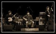 Talaho's
