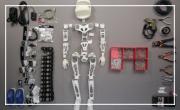 Real robots!