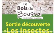 """Sortie découverte """"les insectes"""""""
