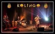 Concert du mois: Kolingo – Musiques Latines