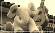 La poupée et l'éléphant ou l'histoire du pays des rêves