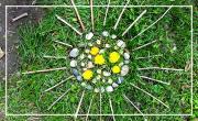 Mercredi 10/10: land art de printemps