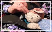 L'atelier de Jeanne: récupération et adoption de doudous en tout genre