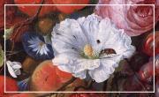 Les natures mortes et les vanités dans la peinture hollandaise du 17e siècle