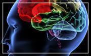 Syndrome de stress post-traumatique: mieux le comprendre pour mieux le traiter