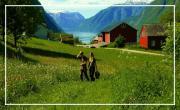 Norvège à contre courant
