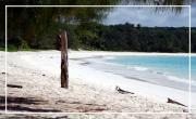 LAPA LAPA, il était une fois … Les Îles Loyauté