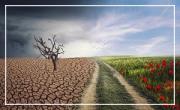 Festival des Solidarités: Le climat se modifie