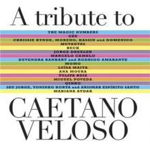 Tribute to Caetano Veloso, Caetano Veloso
